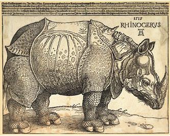 20090506122223-rinoceronte.jpg