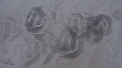 20090509115832-huellas-del-presente.jpg