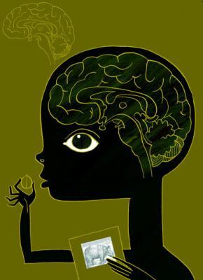 20100503110820-cerebro-.jpg