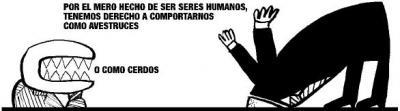 Derechos de los seres humanos